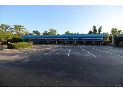 Lecanto Commercial For Sale: 581 E Gulf-To-Lake Highway