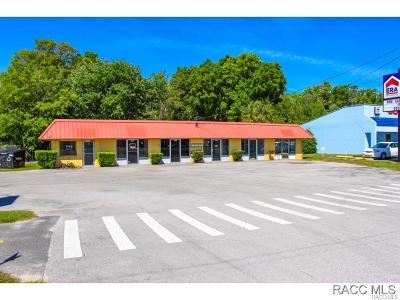 Crystal River Commercial For Sale: 1320 SE Us Highway 19