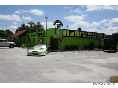Homosassa, Dunnellon Commercial For Sale: 1669 S Suncoast Boulevard