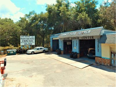 Inverness Commercial For Sale: 2115 N Highway 41 N