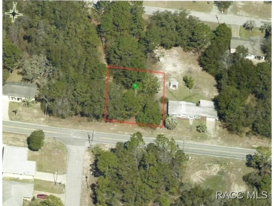 Residential Lots & Land For Sale: 1414 Old Floral City Road