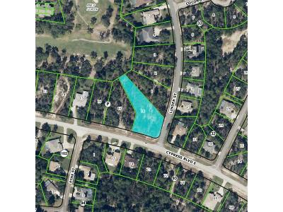 Residential Lots & Land For Sale: 2 Linder Street