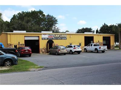 Crystal River Commercial For Sale: 305 NE 9th Avenue