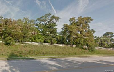 Lecanto Residential Lots & Land For Sale: 2140 S Lecanto Highway