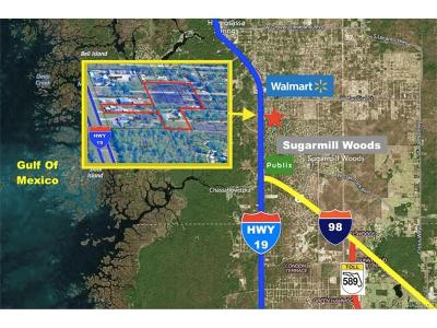 Homosassa, Dunnellon Commercial For Sale: 7429 S Suncoast Boulevard