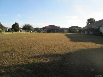 Residential Lots & Land For Sale: 1559 N Killebrew Point