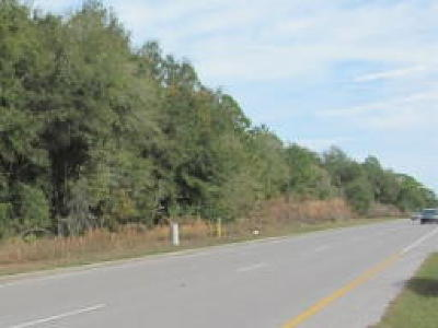 Hernando Residential Lots & Land For Sale: 285 W Norvell Bryant Highway