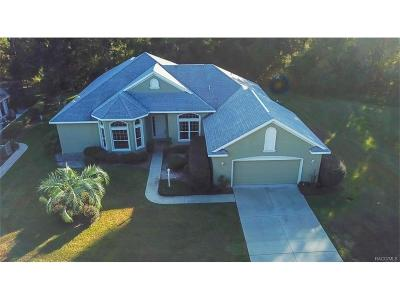 Citrus Hills - Canterbury Lake Estates Single Family Home For Sale: 3456 N Chandler Drive