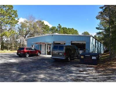 Lecanto FL Commercial For Sale: $597,500