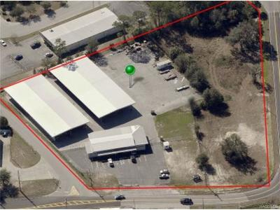 Crystal River Commercial For Sale: 1965 N Dunkenfield Avenue