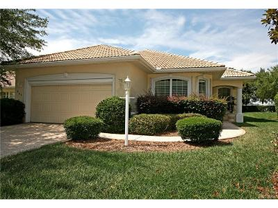 Hernando Single Family Home For Sale: 963 W Skyview Crossing Drive