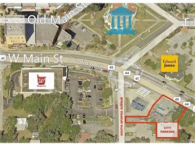 Inverness Commercial For Sale: 104 S Us Highway 41