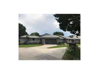 Homosassa Single Family Home For Sale: 5320 S Running Brook Drive
