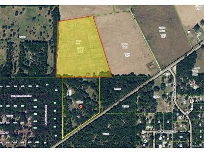 Homosassa, Dunnellon Commercial For Sale: 7175 W Dunnellon Road