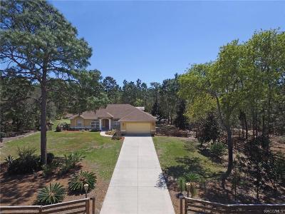 Pine Ridge Single Family Home For Sale: 4295 N Bridger Drive