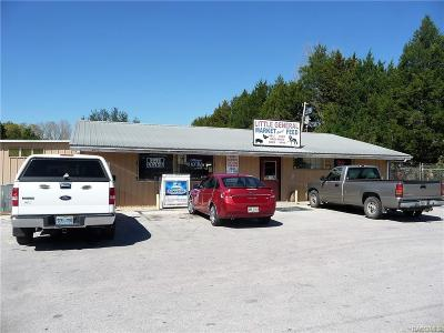 Homosassa, Dunnellon Commercial For Sale: 4611 W Cardinal Street