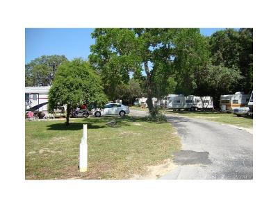 Lecanto Commercial For Sale: 5096 W. Gulf To Lakes Highway