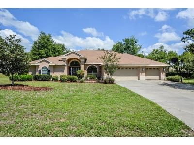 Inverness Single Family Home For Sale: 1186 N Mediterranean Way