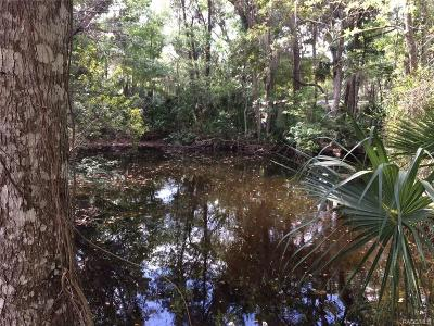 Citrus County Residential Lots & Land For Sale: 10331 W Halls River Road
