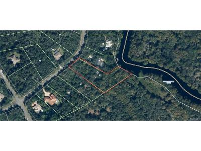 Residential Lots & Land For Sale: 10454 N Natchez Loop