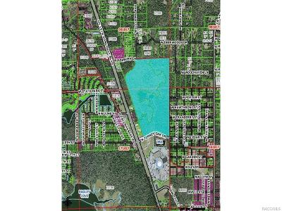 Citrus County Residential Lots & Land For Sale: 1801 NW Hwy 19 Highway