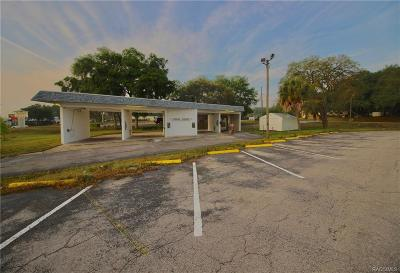 Inverness Commercial For Sale: 725 Southerly Avenue