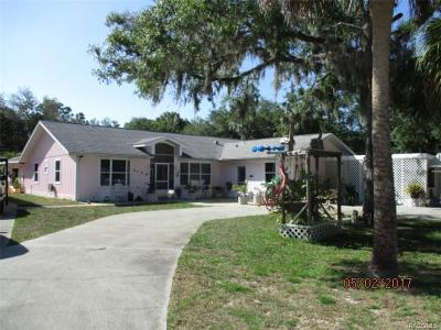 Crystal River Single Family Home For Sale: 6548 N Bugbee Point