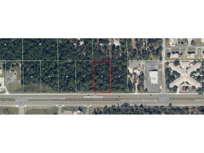 Lecanto Residential Lots & Land For Sale: 2489 W Norvell Bryant Highway