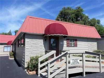 Homosassa, Dunnellon Commercial For Sale: 11902 Illinois Street
