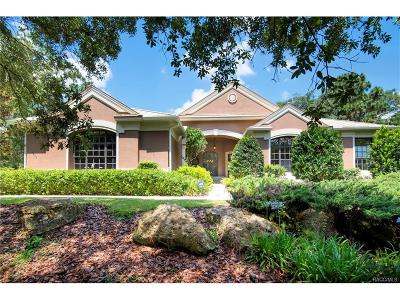Black Diamond Ranch Single Family Home For Sale: 4455 N Pine Valley Loop