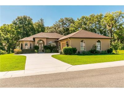 Hernando Single Family Home For Sale: 441 W Cobblestone Loop