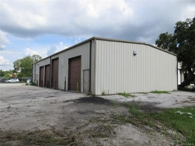 Homosassa, Dunnellon Commercial For Sale: 6438 S Tex Point