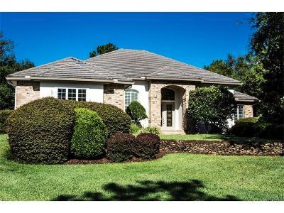 Lecanto Single Family Home For Sale: 3319 N Spyglass Village Path