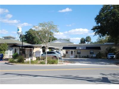 Crystal River Commercial For Sale: 425 N Citrus Avenue