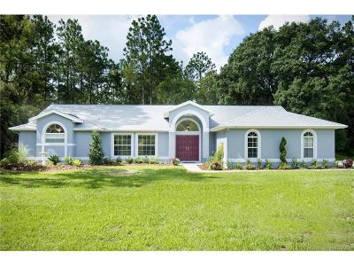 Citrus Springs Single Family Home For Sale: 7215 N Windbrook Drive