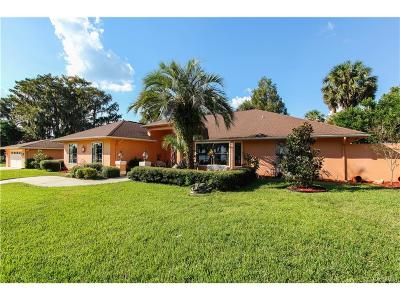 Inverness Single Family Home For Sale: 1430 S Waterview Drive