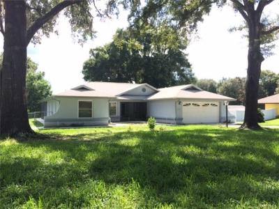 Hernando Single Family Home For Sale: 7130 N Grackle Point