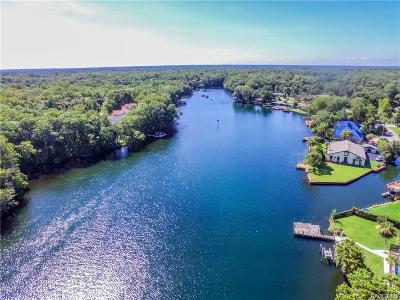 Homosassa Residential Lots & Land For Sale: 9590 W River Holly Path