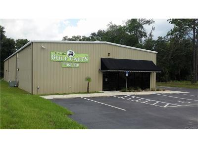 Homosassa, Dunnellon Commercial For Sale: 2484 W Dunnellon Road
