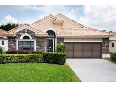 Hernando Single Family Home For Sale: 1141 W Skyview Crossing Drive