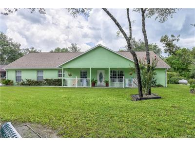 Lecanto Single Family Home For Sale: 575 W Sharp Lane #3