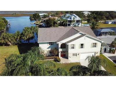 Crystal River Single Family Home For Sale: 11941 W Bayshore Drive