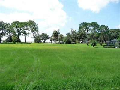 Hernando Residential Lots & Land For Sale: 804 E Epsom Court
