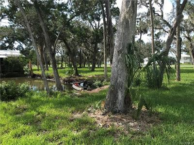 Citrus County Residential Lots & Land For Sale: 2110 S Gulf Water Point