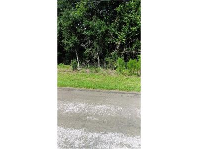Hernando Residential Lots & Land For Sale: 799 Whitecloud Lane