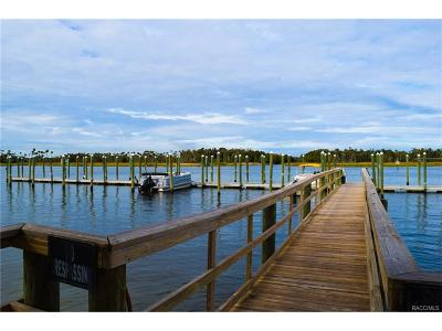 Crystal River FL Condo/Townhouse For Sale: $144,000