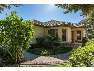 Citrus Hills - Terra Vista Single Family Home For Sale: 296 W Doerr Path