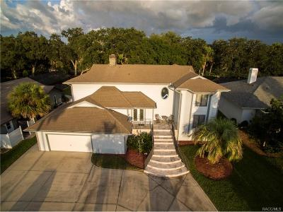 Homosassa Single Family Home For Sale: 4999 S Deep Water Point