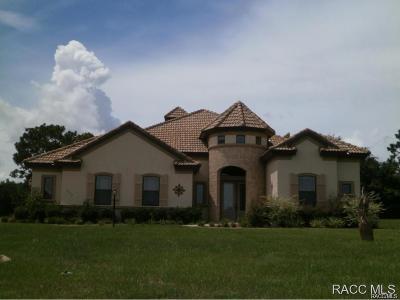 Hernando Single Family Home For Sale: 1332 N Cherry Pop Drive