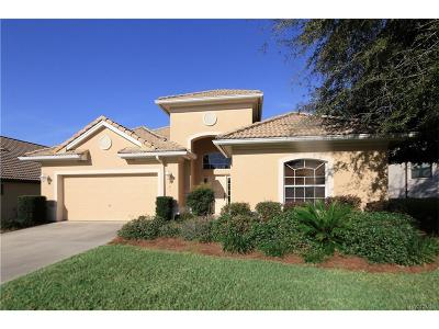 Hernando Condo/Townhouse For Sale: 983 W Skyview Landings Drive #21A